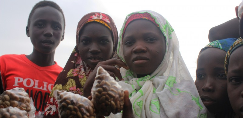 In the Land of Nigeria's Kidnapped Girls