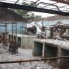 Foreign Mercenaries Will Worsen the Boko Haram Insurgency