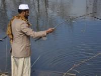 Alhaji Mohamed Bah, search the pond.
