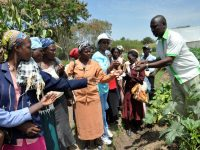 Training African women farmers in Kenya on new seed variety suited for which types of soil and climate. Photo: Henry Owino/ The AfricaPaper